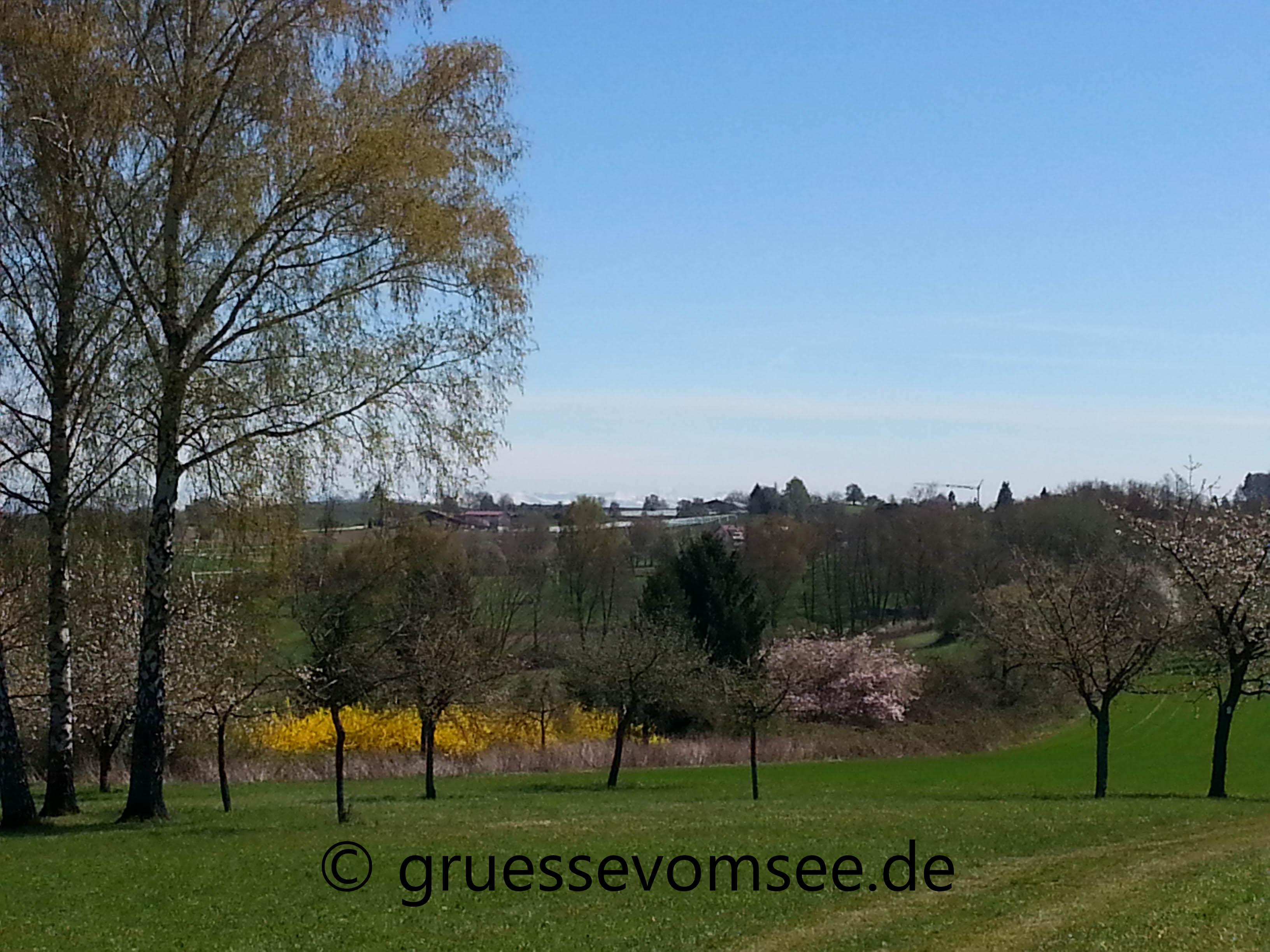 Premiumswanderweg_SeeGang_Teilstück_Dingelsdorf_Wallhausen