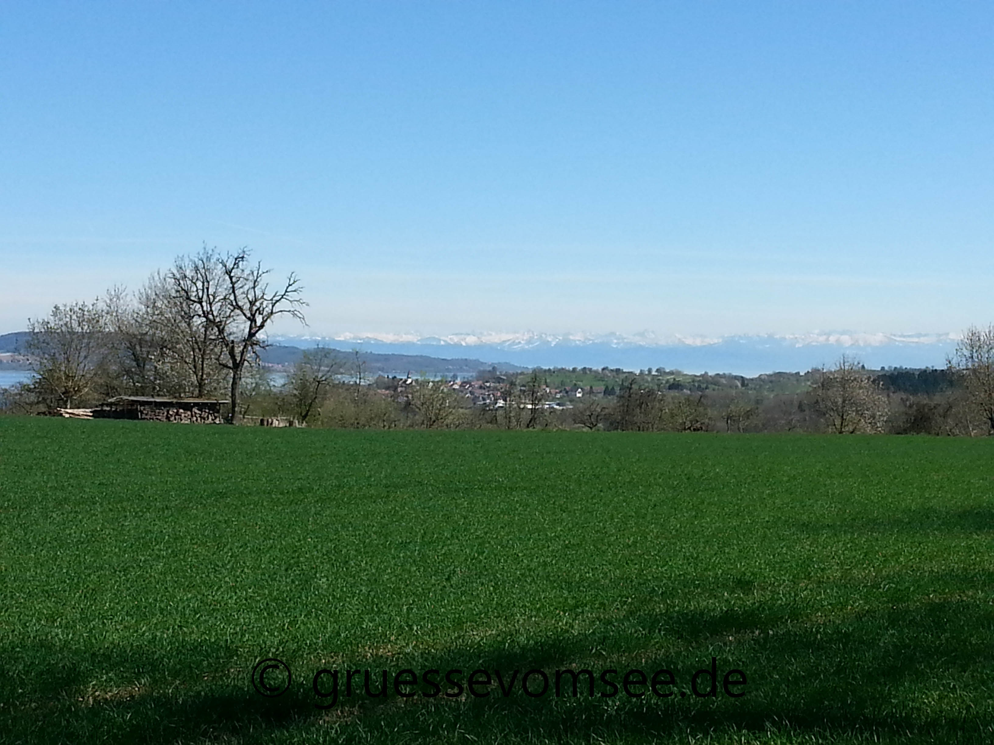 Premiumwanderweg_SeeGang_Teilstück_Dingelsdorf_Wallhausen