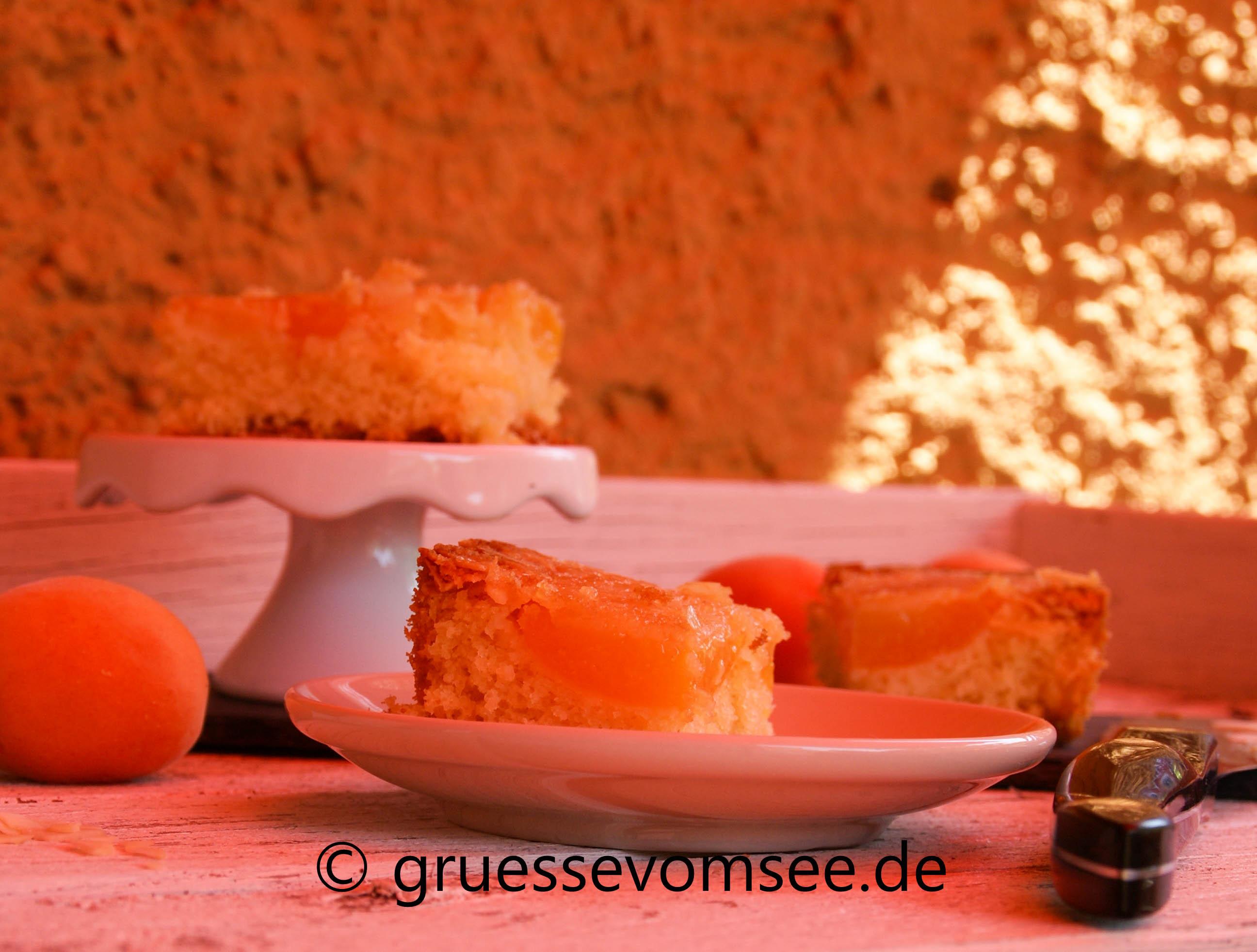 Aprikosenkuchen_Glutenfrei_Loveofbaking_Gruessevomsee